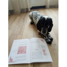 Книга «Українські шахові казки»