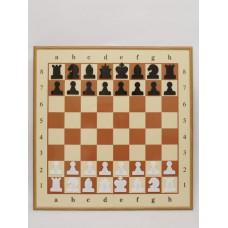 Demonstration chess board